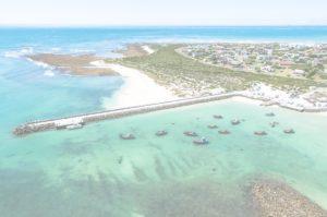 contact-us-western-indian-ocean-marine-science-association-WIOMSA-research-ecology-Zanzibar-Tanzania