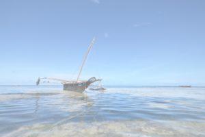 news-updates-western-indian-ocean-marine-science-association-WIOMSA-research-ecology-Zanzibar-Tanzania