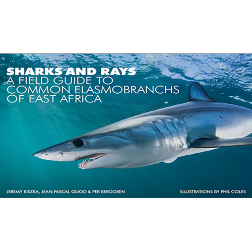 sharks and rays a field guide to common elasmobranchs of east africa